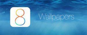 2602926 ba19d61ffdd2c30f848bd4901884a7ca 300x122 - iOS 8 Stock HD Wallpapers Download