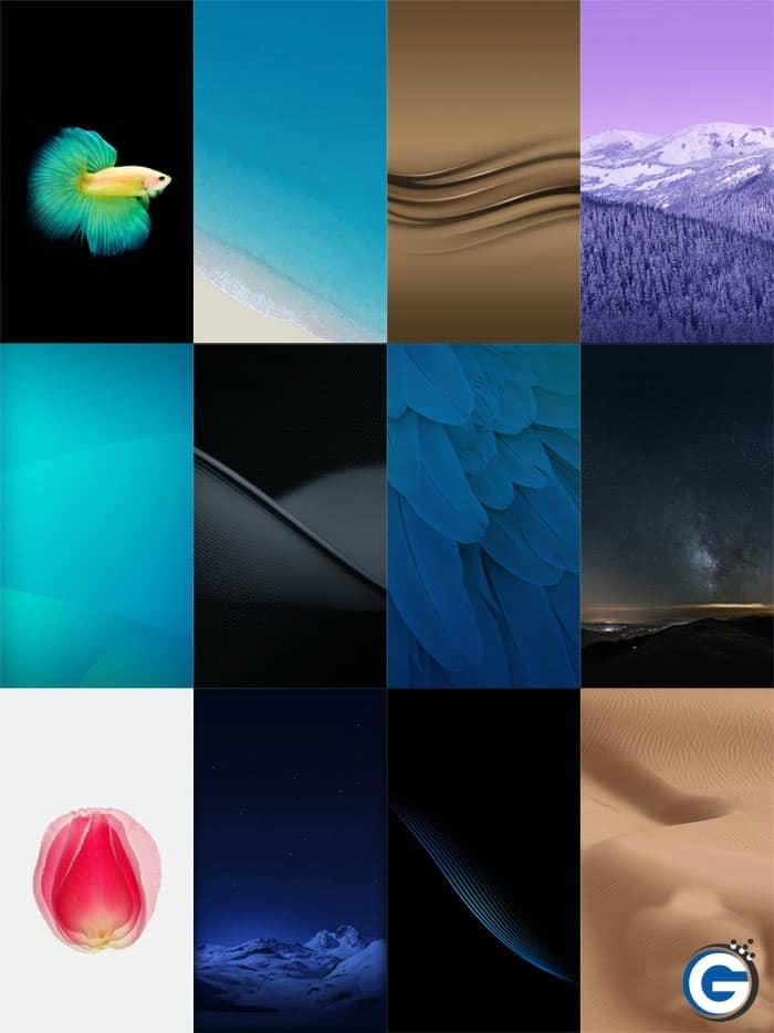 Vivo Xplay 6 Stock Wallpapers 2 - Download Vivo Xplay 6 Stock Wallpapers in 2K Resolution