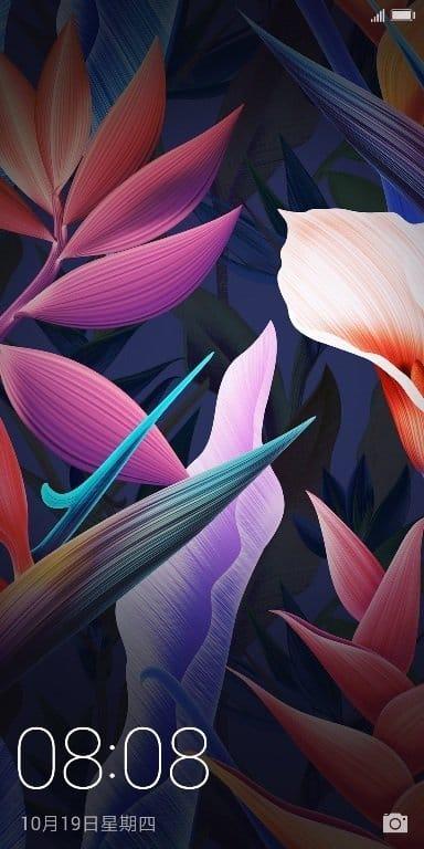 Flowers emui 6.0 theme 3 - Download Huawei Mate 10 Stock Themes, EMUI 8.0 Themes
