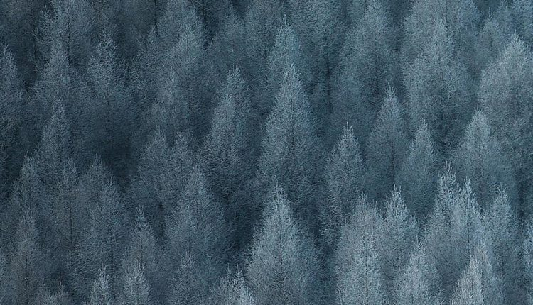 Realme Q Stock Wallpapers GIZDEV 3 750x430