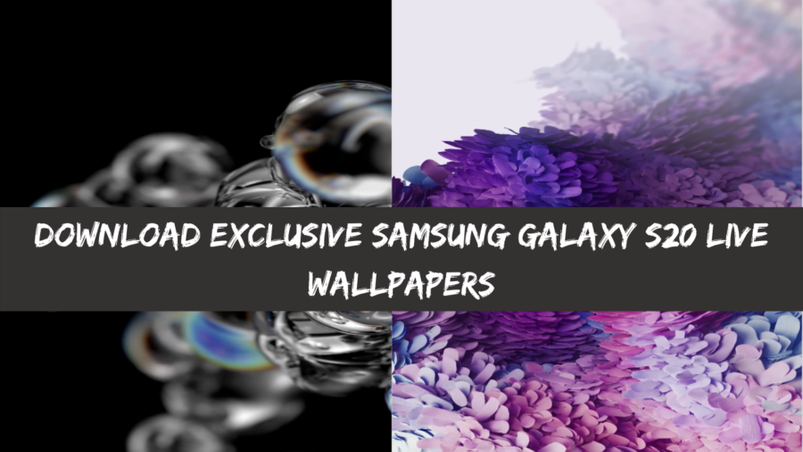 Download Exclusive Samsung Galaxy S20 Live Wallpapers Video Walls e1578995794153