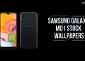 Samsung Galaxy M01 Stock Wallpapers